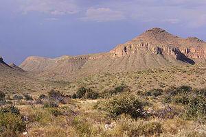 Chihuahuan_Desert