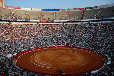 Guide To Bullfighting In Mexico Mexican Insurance Policy Mexican